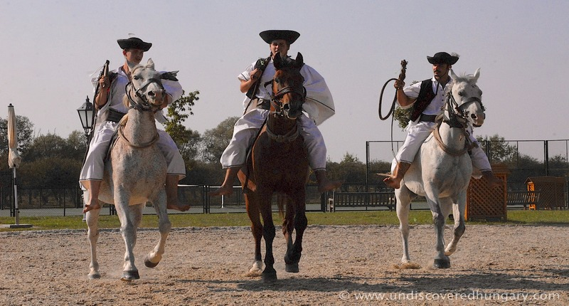 Hungary Horse Riding