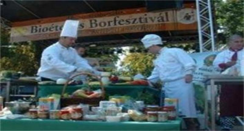 Hungary Wine Festivals