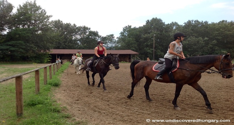 Hungary Children/adult holiday camps with horse riding