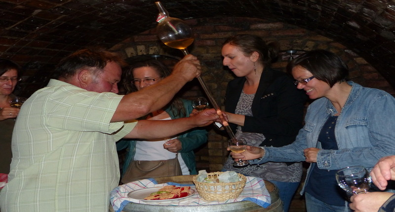 Hungary Wine tasting and carriage ride near Budapest