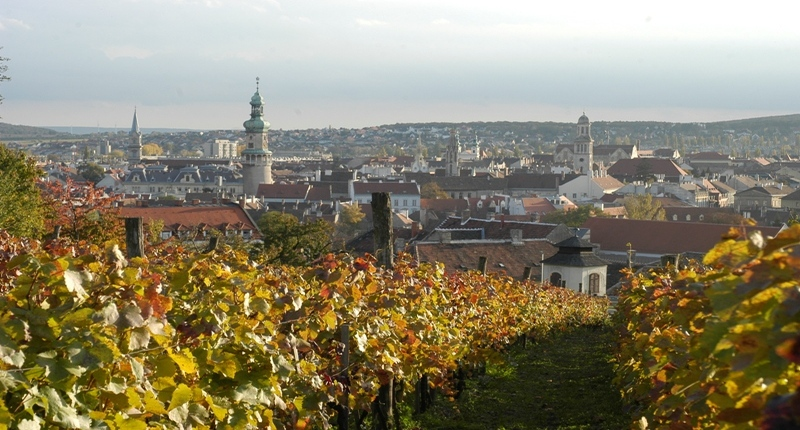 Hungary Sopron wine region, West Hungary