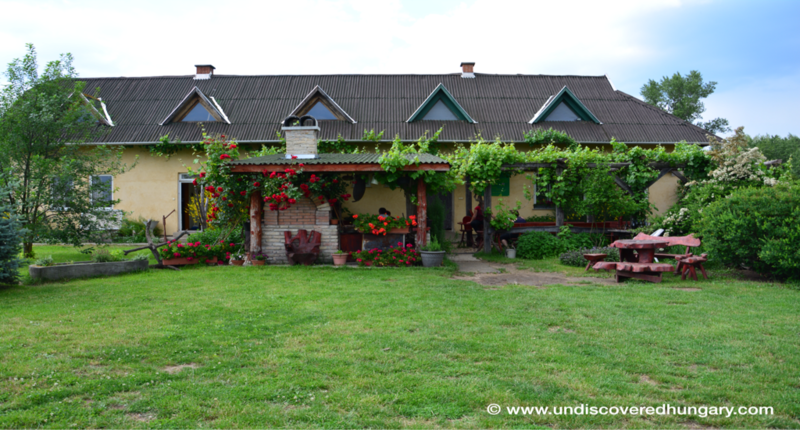 Hungary Zablakert Equestrian Farm with accommodation near Budapest